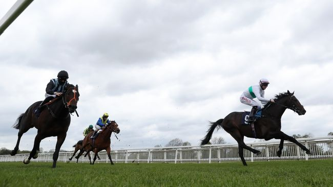 Sevenal (right) in action at Windsor recently