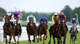 There's an exciting day of racing ahead at Doncaster