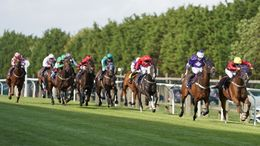 Brighton's seven-race card is our focus for Wednesday's action