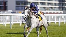 Snow Lantern took the Falmouth Stakes on Friday.