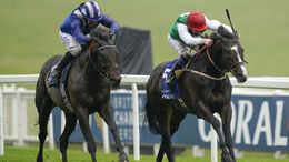 Pyledriver (right) has been ruled out of the King George Stakes