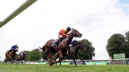 Franny Norton steers Sir Ron Priestley to victory.