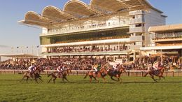 Wednesday's action at HQ is our focus with an eight-race card coming up from Newmarket