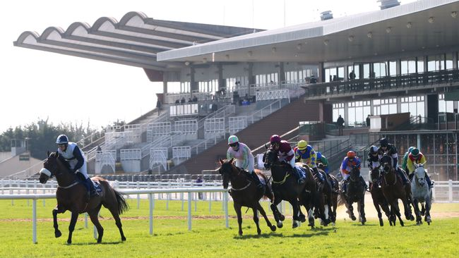 There is a fascinating eight-race card coming up from Fairyhouse on Sunday.