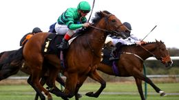 Atalis Bay runs in the feature race at Sandown on Saturday at 2.15pm