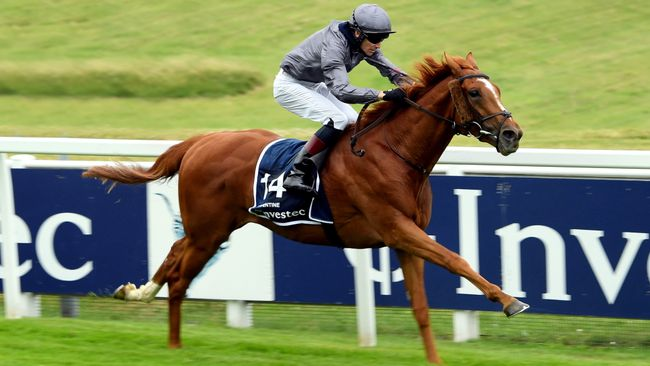 Serpentine has been supplemented for the Gold Cup
