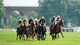 Worcester's seven-race jumps card is our Monday focus