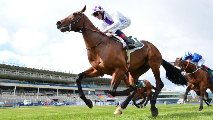 Jim Bolger feels Poetic Flare is improving ahead of Sussex Stakes