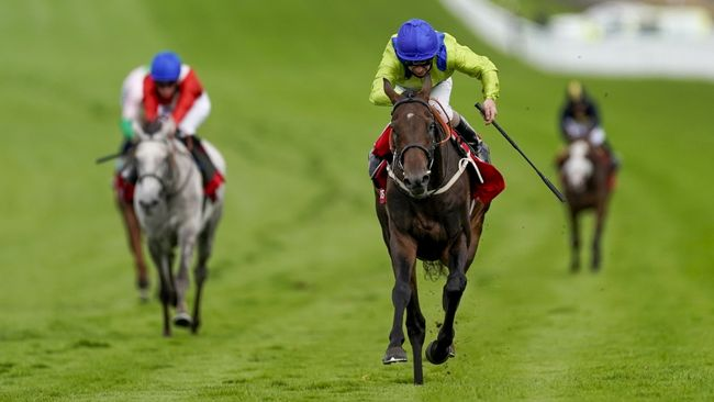 Subjectivist suffered a scare but should be fine for the Gold Cup