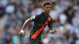 Demarai Gray has hit the ground running since signing for Everton
