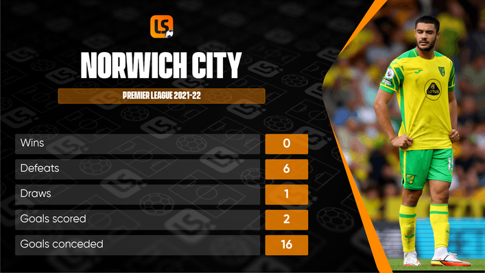 It has been a difficult return to the Premier League for Norwich so far