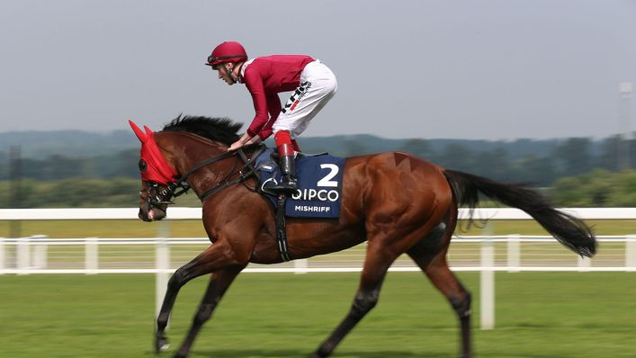 Mishriff will be hoping to claim the spoils in the Champion Stakes at Ascot