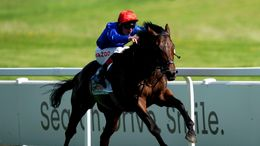 Adayar will be gunning for Champion Stakes glory at Ascot on Saturday
