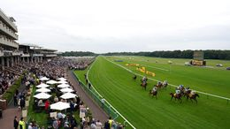 Our full focus is on Haydock's fantastic eight-race card on Friday