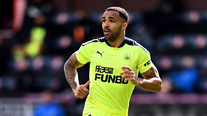 Callum Wilson could return to Newcastle's starting line-up for the visit of West Ham