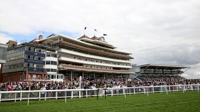 There are eight races at Newbury on Friday