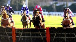 Our Sunday focus centres on the season-opening jumps card at Kempton