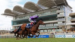 Ascot's card is a big part of Saturday's high-quality action