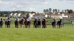 The Virgin Bet Ayr Gold Cup is one of the feature races on Saturday while there is also an excellent Newbury card