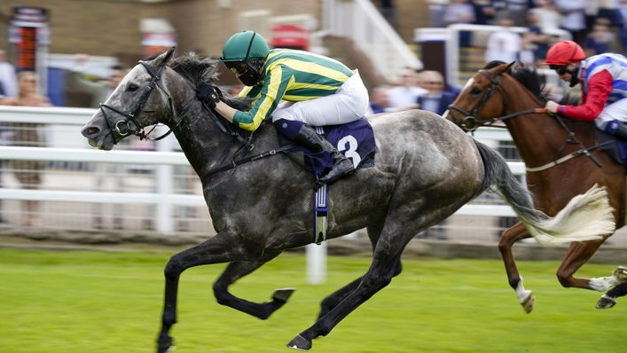 Vintager is a two-time Group winner