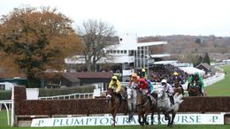 The field take a fence at Plumpton racecourse
