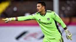 Alphonse Areola was Fulham's Player of the Season in 2020-21 and will be looking to make a similar impact at West Ham