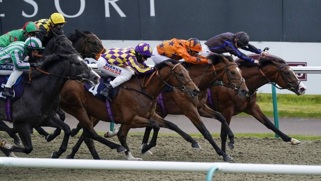 Bicep (right) is looking to build on narrow Lingfield win