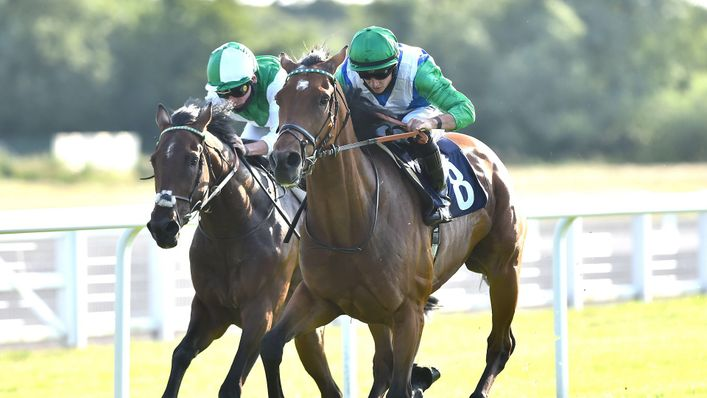 Kettle Hill could secure a second-straight victory when he runs at Goodwood on Wednesday