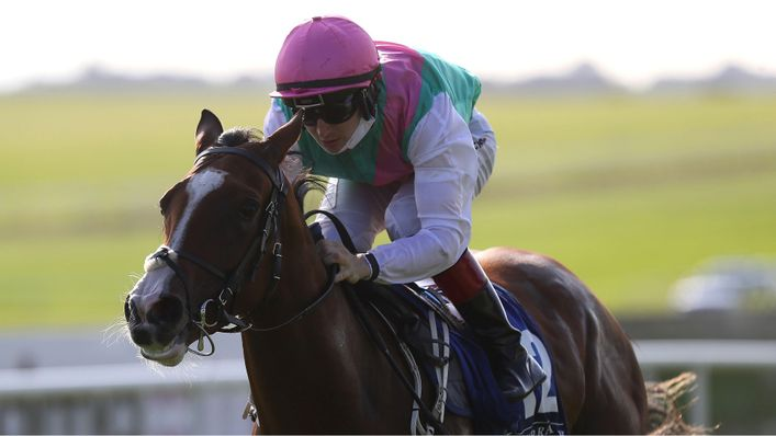 Sacred Bridge is the favourite to land the Cheveley Park Stakes at Newmarket this weekend