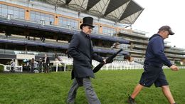 Leading flat trainer Aidan O'Brien inspecting the ground at Ascot