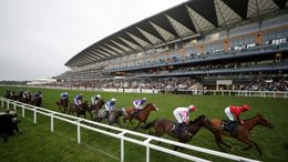 Ascot hosts a seven-race card on Friday afternoon