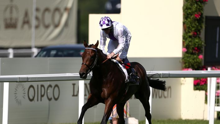 Jim Bolger's Poetic Flare looks the one to beat at Goodwood next week
