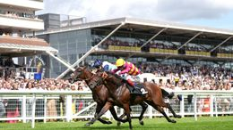 Masekela is in the ascendency at Newmarket