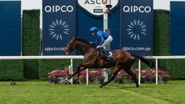 William Buick has opted for Adayar
