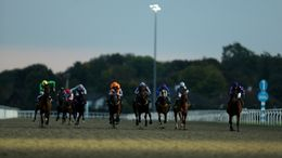 Kempton plays host to seven races on Monday