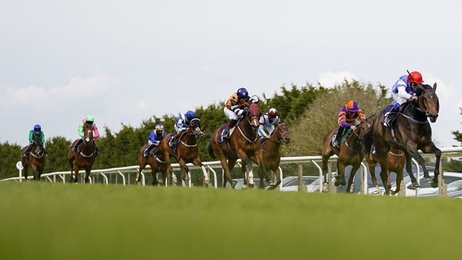 Dawn View (right) is looking for a quick double after winning at Brighton on Friday.